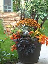 Fall container garden | Autumn | Pinterest