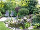 Small English Garden Ideas | CDxND.com - Home Design in Pictures