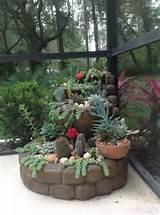 Cactus Garden May | Front yard ideas | Pinterest