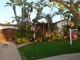 Florida Tropical Landscaping Ideas Front | tropical front yard http ...