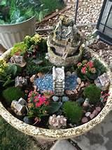 fairy garden indoor jungle houseplants pinterest