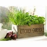 Kitchen Herb Garden Ideas (12 Pics)
