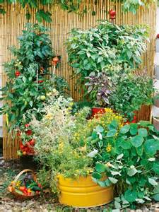new garden idea picture container gardening ideas container gardening ...