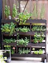 wooden pallet garden ideas Book Covers