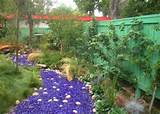 tumbled glass river in garden garden ideas pinterest