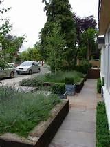 Gardens Contemporary Front Garden Design Ideas | Garden Design Idea