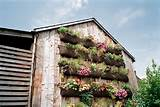 ways to plant a vertical garden how to make a vertical garden