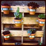 Pallet garden!! | Garden Ideas | Pinterest