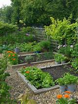 ... flowers garden fence gravel also gardening ideas for beginners