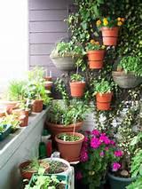 Como Fazer um Jardim na Varanda?- Feminina