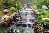 ... ponds-stress-relief.html/attachment/waterfalls-ponds-garden-ideas Like