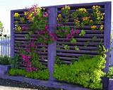 DIY Vertical Garden - 10 Ways to