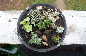 diy container succulent garden last minute homemade mother s day