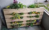 Insanely Creative Vertical Garden Ideas (9)