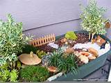 garden turned into a fun campground garden desiree griffiths and her