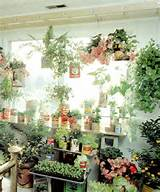 more herb garden indoor gardenvia desiretoinspire