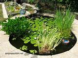 30 garden container ideas container pond