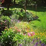 cottage gardens