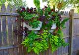 Tags : balcony garden ideas , garden wall art , vertical wall garden