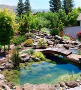... pond Natural Inspiration: Koi Pond Design Ideas For A Rich And