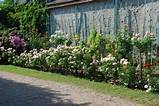 ... ideas; house garden deco; house garden ideas; house garden rose; DIY