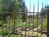 how to build a deer proof funky garden enclosure fence
