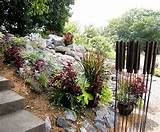 of a pondless waterfall purple and burgundy foliage tie the plantings