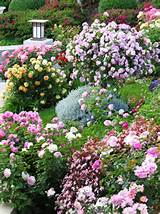 gardens to love landscaping ideas and hardscape design hgtv