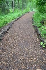 easy path cool garden path ideas amazing garden path ideas with