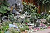 Fairy gardens | Tonkadale Greenhouse