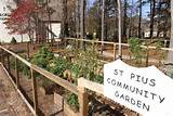 The community garden at St. Pius X Church in Conyers, Ga., which was ...