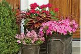 ... Planters - Spectacular Container Gardening Ideas - Southern Living