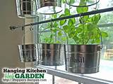 10 Indoor Herb Garden Ideas | Nothing is better than cooking with ...
