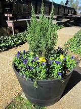... to Spruce Up Our Outdoor Space | The Home Depot Garden Club #DigIn