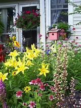 rms sunny777 front yard perennial garden s3x4 jpg rend hgtvcom 1280