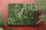 To Do This Weekend Easy Gardening Projects-Flora Grubb Vertical Garden ...