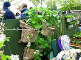 These vegetable garden ideas , presented at Malvern Gardening Show are ...