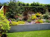 drought tolerant gardens mediterranean landscape