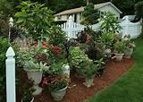 ... Ideas, Container Gardens, Garden Ideas, Garden Design, Gardening Ideas
