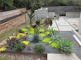 Xeric landscaping | Yard Ideas | Pinterest