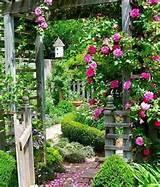 Pretty garden | Cottage Garden Ideas | Pinterest