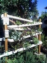 ... Garden Ideas, Vertical Gardens, Vertical Earth, Earth Gardens, Pvc