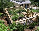 Vegetable Garden Patio Enclosures Ideas for Make a Vegetable Garden ...