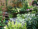 Backyard garden pond | Water Features | Pinterest