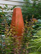 shade behind orange rocket barberry and japanese forest grass
