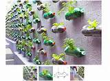 recycled soda bottle planters home ideas projects pinterest
