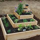 42- Ideas simples para tener un huerto en el jardín
