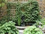 Garden Trellis Ideas for Water Fountain Design