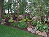 landscaping rock garden shade garden gardens ideas shady garden