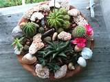 Miniature garden | Miniature Fairy, Gnome, etc. Garden ideas | Pinter ...